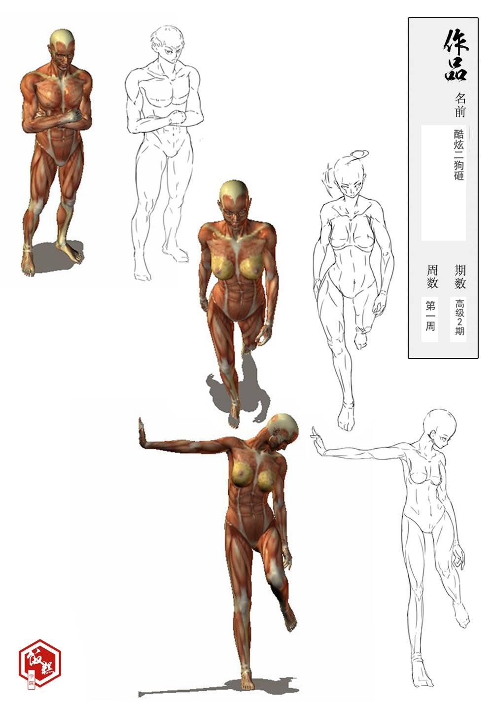 澡逼人体_第一张男性人体崩掉了qaq 然后对肩宽和脚的画法比较懵逼.
